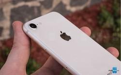 Các iPhone trong tương lai có thể sẽ sử dụng công nghệ camera tương tự Pixel Phone