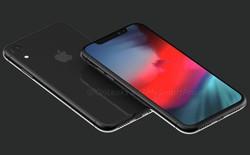 Các phiên bản iPhone OLED có thể được phát hành trước iPhone LCD