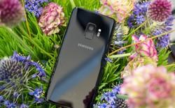 Samsung quyết đòi lại những gì đã mất từ Xiaomi