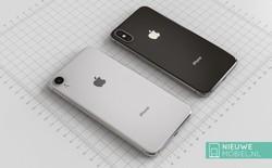 iPhone LCD 6.1 inch sẽ bị trì hoãn ngày lên kệ vì một lý do hết sức bất ngờ