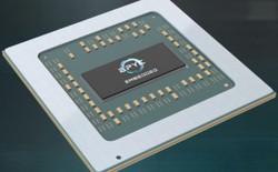 Dính lệnh cấm xuất khẩu của Mỹ, Trung Quốc liên doanh với AMD tự sản xuất chip x86 cho máy chủ
