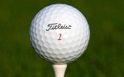 [Nghề lạ] Mò hồ lặn bóng: Kiếm tiền từ thú đánh golf của đại gia