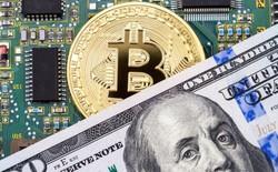 IBM chuẩn bị ra mắt một đồng tiền mã hóa được bảo đảm bằng USD