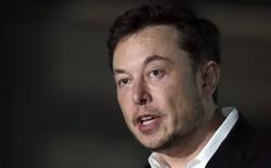 """Dự báo """"lạnh sống lưng"""" của JP Morgan dành cho Tesla: Cổ phiếu của công ty này sẽ giảm hơn 40% trước cuối năm"""