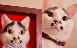 Nghệ sĩ Nhật Bản khiến cư dân mạng trầm trồ vì khả năng tạo hình mèo 3D từ len giống y như mèo thật