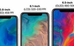 Khó khăn được giải quyết, màn hình Full-Active Flex LCD cho iPhone 9 đã bắt đầu được sản xuất hàng loạt