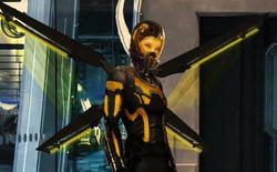 Tìm hiểu về The Wasp - Nàng chiến binh ong cực ngầu của Vũ trụ Marvel