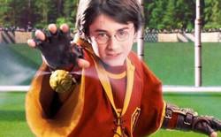 """Tìm hiểu về Quidditch, môn thể thao vua trong giới Pháp thuật: hóa ra luật """"trái Snitch vàng"""" vô lý xuất phát từ một cuộc cãi lộn giữa tác giả Rowling và bạn trai"""