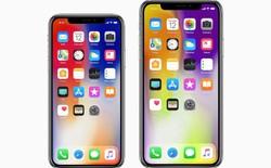 Màn hình iPhone X Plus sẽ có độ phân giải 1242x2688, cao hơn iPhone X nhưng vẫn kém xa Android
