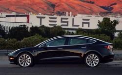Khách hàng phàn nàn vì xe Tesla Model 3 rụng cản sau chỉ vì trời mưa lớn