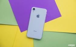 iPhone 6.1 inch sắp ra mắt của Apple về VN dưới dạng mô hình