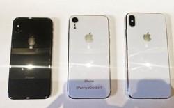 Tiếp tục rò rỉ hình ảnh về bộ ba iPhone 2018: iPhone 9 đọ dáng bên cạnh hai người anh em iPhone X và iPhone X Plus