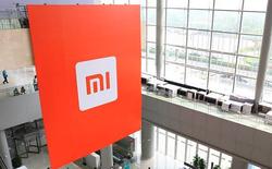 """Goldman Sachs: """"Xiaomi đang cố xây núi bằng cách vun từng hạt gạo một"""""""