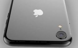 Tin buồn dành cho iFan, iPhone LCD 6.1 inch sẽ chỉ dùng chip A10 chứ không phải A12 mới nhất