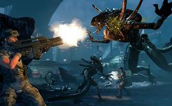 Chỉ một kí tự trong dòng code bị sai đã khiến cả một game bom tấn bị vứt sọt rác, chính nhờ cộng đồng game thủ tận tụy đã cứu rỗi nó