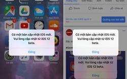 Cách tạm thời sửa lỗi iOS 12 beta liên tục đòi cập nhật, mặc dù iPhone đã ở phiên bản iOS mới nhất