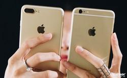 Bỏ SIM ghép dùng như quốc tế, iPhone Lock quay đầu tăng giá
