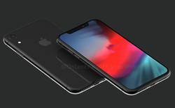 Apple có thể từ bỏ chiến lược sử dụng màn hình OLED cho tất cả iPhone trong tương lai