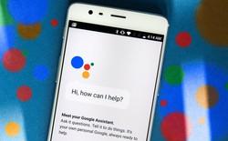 Google Assistant đánh bại Siri, Alexa và Cortana trong bài kiểm tra IQ