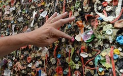 Thay vì vứt ra đường, người Mỹ dùng bã kẹo cao su tạo nên những bức tường nghệ thuật vô cùng độc đáo