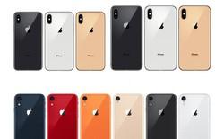 A đây rồi: 6 phiên bản màu sắc của iPhone XR đã lộ diện, có cả màu cam san hô và vàng đồng