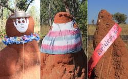 Người Úc đang thi nhau mặc quần áo cho tổ mối để gây cười