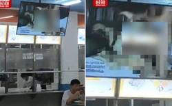 """Trung Quốc: Phim người lớn bỗng chiếu ở căng tin Đại học, nhà trường bảo """"bị hack đấy"""""""