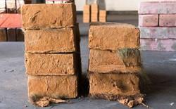 Tái chế tóc và phân ngựa làm gạch xây nhà, giải pháp tuyệt vời ứng phó biến đổi khí hậu
