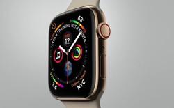 Bất ngờ thú vị về pin của Apple Watch Series 4