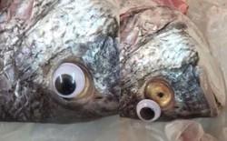 Gian thương ở Kuwait dán mắt nhựa biến cá ươn thành cá tươi