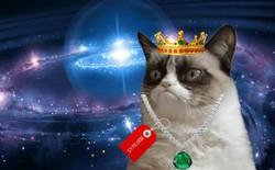 Ai đó vừa trả 4 tỷ đồng để mua một chú mèo ảo CryptoKitty