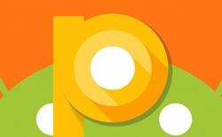 Android P sẽ có tính năng ngăn ứng dụng chiếm quyền điều khiển camera và micro?
