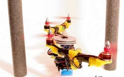 Nghiên cứu thành công robot có thể gập cánh khi bay qua không gian hẹp lấy ý tưởng từ đôi cánh của loài chim