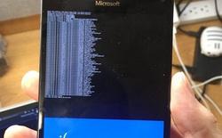 [Video] Nhà phát triển đã có thể cài thành công Windows 10 ARM trên Lumia 950 XL