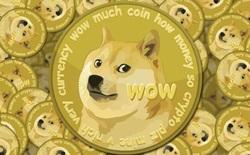 Từ trò đùa hóa thành hiện tượng, Dogecoin là minh chứng cho thấy thị trường tiền mã hóa điên rồ như thế nào
