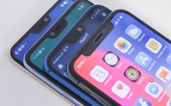 Cuộc chiến tai thỏ: Apple iPhone X, Oppo F7, Huawei Nova 3E và Vivo V9