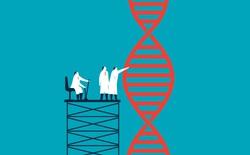 Nếu giải mã gen cơ thể, DNA của bạn sẽ giống người bên cạnh 99,9%, giống một quả chuối 60%