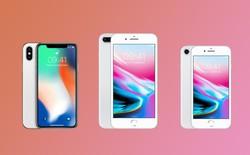 LG Display bắt đầu cung cấp màn hình OLED cho iPhone từ nửa cuối năm 2018