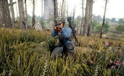Tựa game hot nhất thế giới, PlayerUnknown's Battlegrounds có thể sẽ được Netflix chuyển thể thành phim