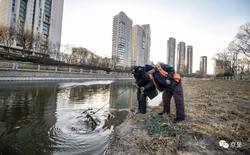 Trung Quốc: Tổng cộng hơn 1000 chiếc xe đạp chia sẻ được vớt dưới sông lên