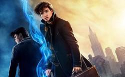 """Mâu thuẫn dòng thời gian với chính Harry Potter, Fantastic Beasts 2 đang """"hack"""" não fan đấy ư?"""