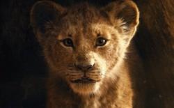 """Tại sao """"The Lion King"""" chẳng có lấy một mống người nhưng vẫn được gọi là phim """"live-action""""?"""