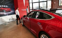 Sau 8 năm kể từ khi ra mắt IPO, Tesla vẫn chưa có năm nào có lợi nhuận, nhưng họ không phải là người duy nhất trong hoàn cảnh này