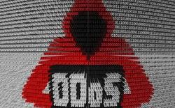 Hacker tìm ra cách khuếch đại sức mạnh các cuộc tấn công DDos lên hơn 51.000 lần, mạnh nhất lịch sử nhờ phương thức mới