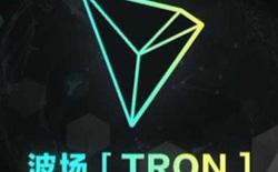 TRON - TRX: Minh chứng cho sự đáng sợ của thị trường tiền mã hóa