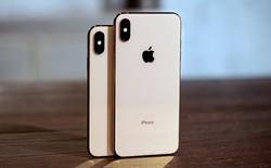 Q3/2018: Apple và Samsung dẫn đầu phân khúc smartphone cao cấp, Apple thống trị phân khúc giá trên 800 USD