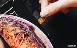 Ham hố mua iPhone XS Max giá rẻ, tôi được gì và mất gì?