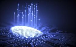 Các nhà nghiên cứu phát triển được vân tay nhân tạo, tuyên bố họ có thể hack 1/3 smartphone trên thị trường