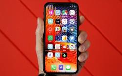 Apple sẽ đánh đổi chi phí lấy chất lượng hiển thị khi chuyển 100% iPhone dùng màn LCD sang OLED vào năm 2020?