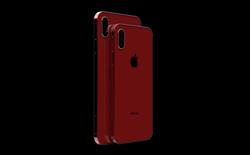 Đây là chiếc iPhone 11 mà chúng ta luôn mong đợi